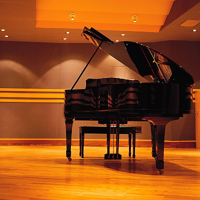 Professional Pianist for Weddings, Corporate Events | Piano Lessons